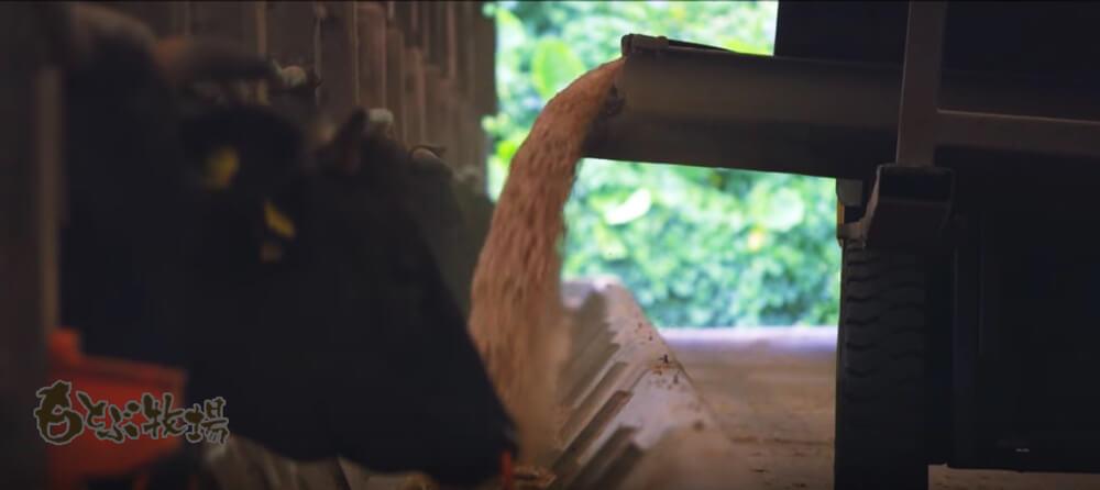 もとぶ牛 沖縄こだわり黒毛和牛 ロースステーキ ラコントゥル